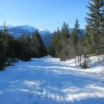 Skiing down Access Road