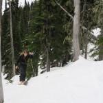 Ascending through trees