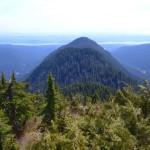 Lynn Ridge